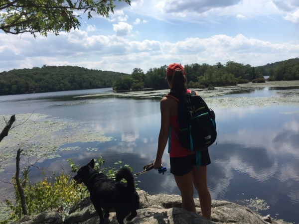 Weekend Getaway: Ramapo Mountain State Forest