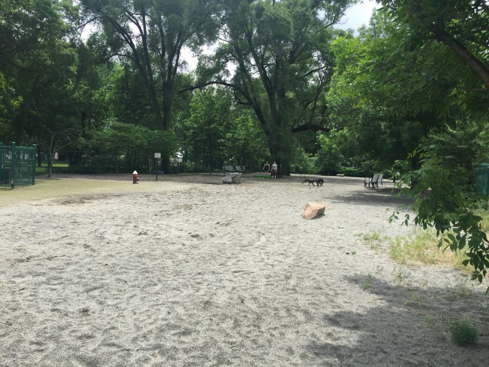 Pup Park Spotlight: Lincoln Park