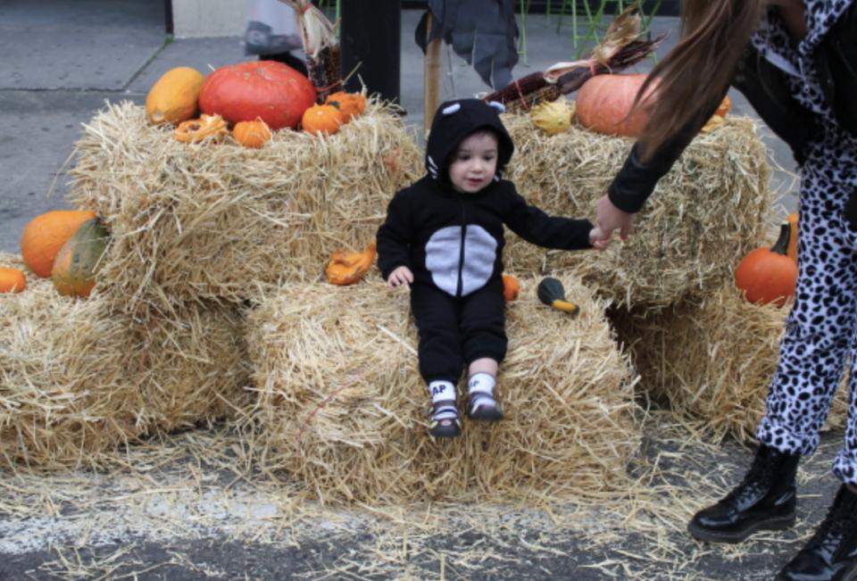 HDSID Presents Halloween Family Bash!