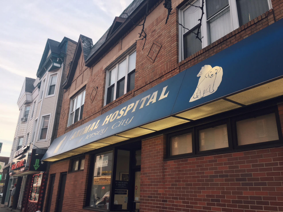 The Animal Clinic and Hospital of Jersey City
