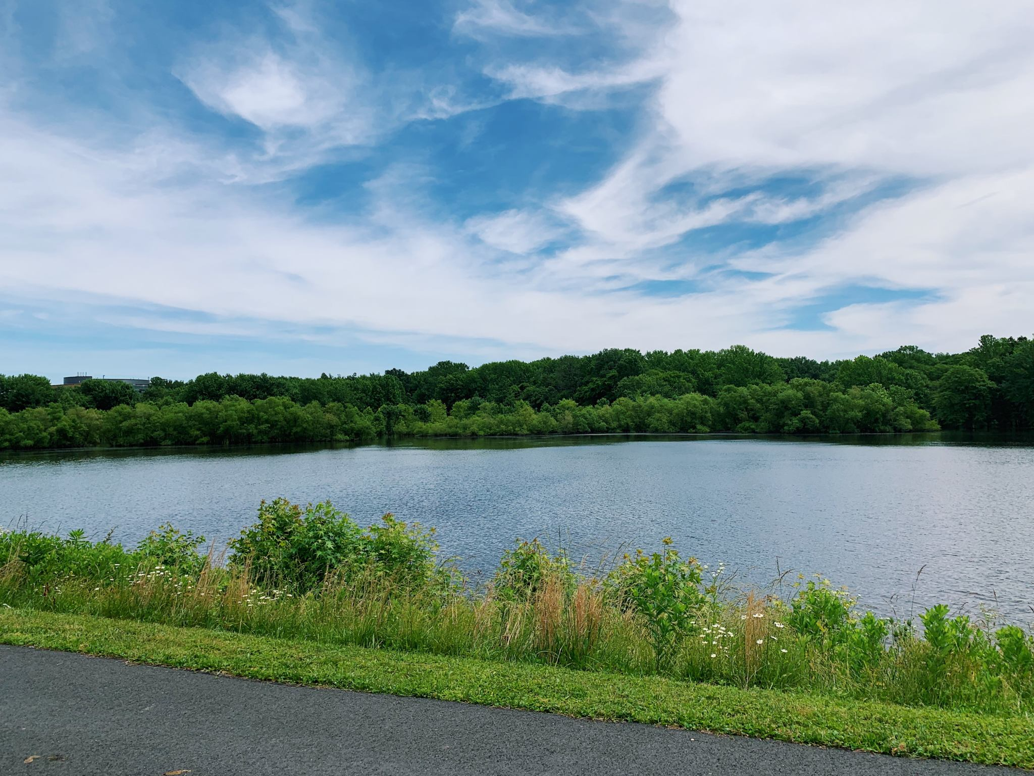 Ten Hiking Trails to Check Out in New Jersey - chicpeaJC