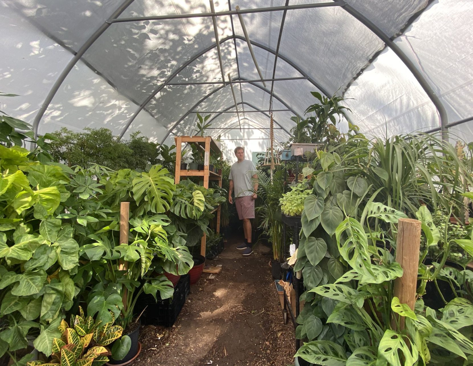 """The Plant House"" – A Jersey City Green Oasis"