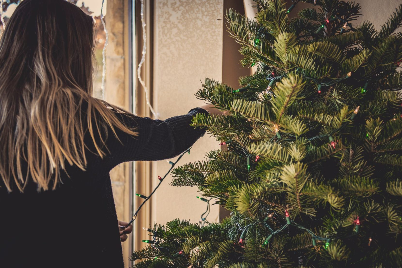 Where to get Christmas trees in the Jersey City area